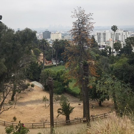 Glitterati Tours: When June Gloom burns off, Runyon Canyon offers great views of Hollywood in Los Angeles.