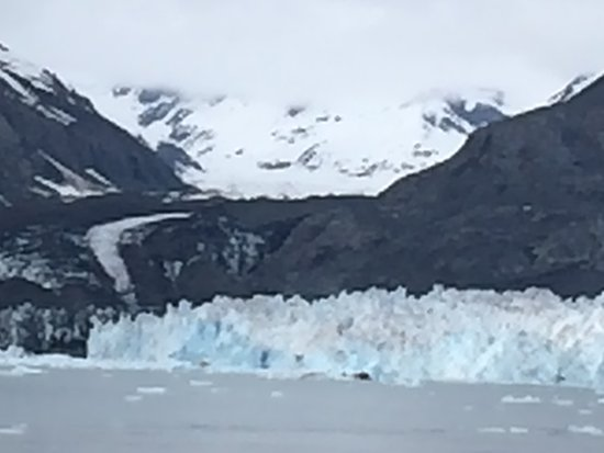 Lu Lu Belle Glacier Wildlife Cruises: Part of the face of the Columbia Glacier
