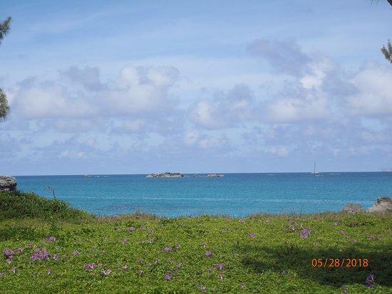 写真Hidden Gems of Bermuda Ltd.枚