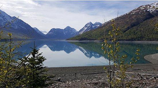 Riding Alaska Atv Tours Chugiak 2019 All You Need To
