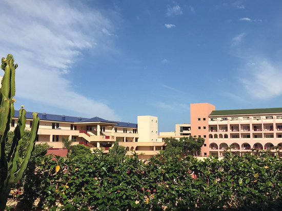 Hotel Best Jacaranda : Hotel grounds