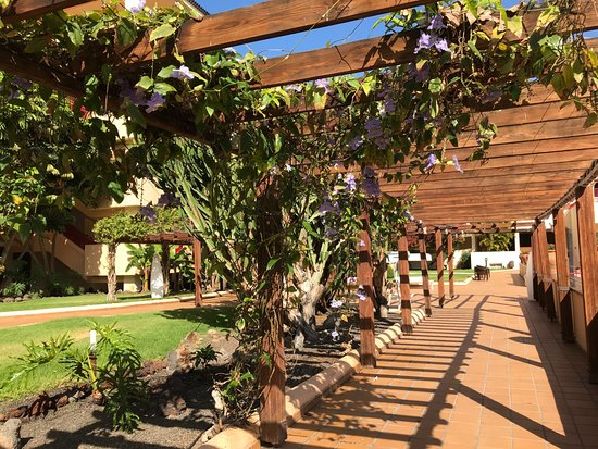 Hotel Best Jacaranda : Quiet and pretty walkway area to chill out in