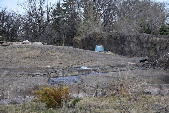 Assiniboine Park Zoo: zoo