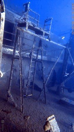 Cyprus Diving Adventures : Zenobia