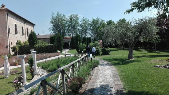 Corropoli, Ιταλία: IMG_20180512_102242_large.jpg
