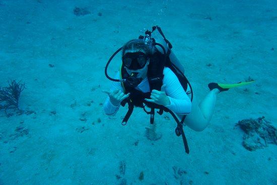 West End Divers : dive boat