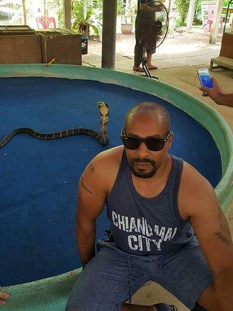 Mae Sa Snake Farm: FB_IMG_1527887750770_large.jpg