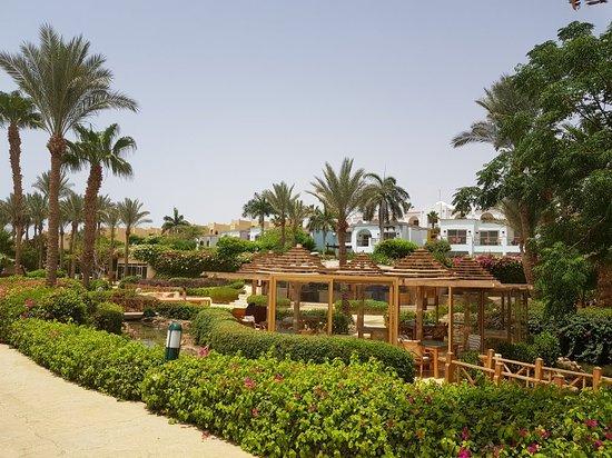 The Royal Savoy Sharm El Sheikh: 20180526_103948_large.jpg