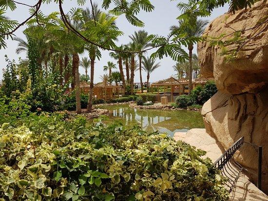The Royal Savoy Sharm El Sheikh: 20180526_103749_large.jpg