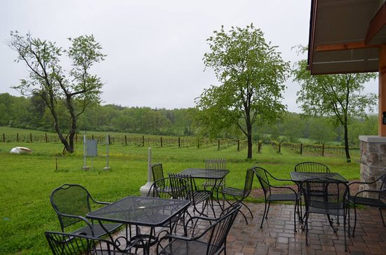 Mountain View Vineyard, Winery & Brewery : Outside Sitting Area By The Entrance