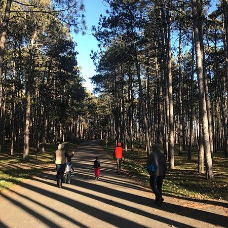 Johnson-Sauk Trail - State Recreation Area: photo1.jpg