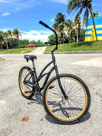 Electric Bike Miami: Ride a beach cruiser along the haulover park bike path
