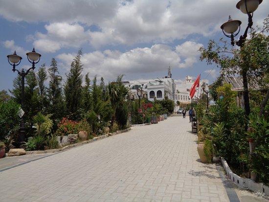 Medina of Hammamet: Medina
