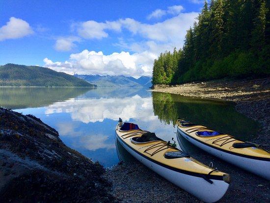 Tongass Kayak Adventures: Thomas Bay Sea Kayaking