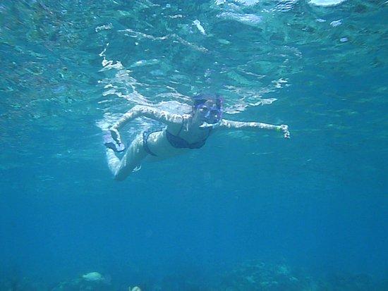 Neptune's Cove: Beautiful View