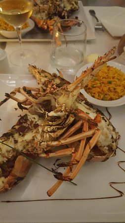 Bistrot Caraibes: pick your lobster