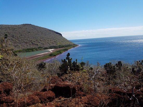 Rabida Island: 20180515_150111_large.jpg
