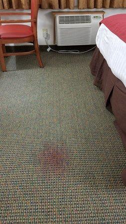 Floor of Room - Best Western Cherokee