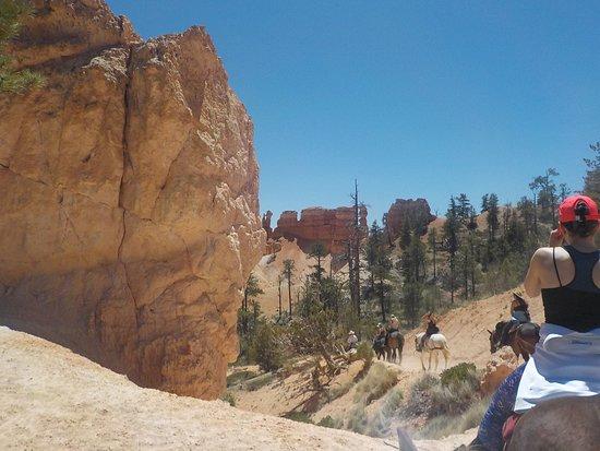Canyon Trail Rides: along trail