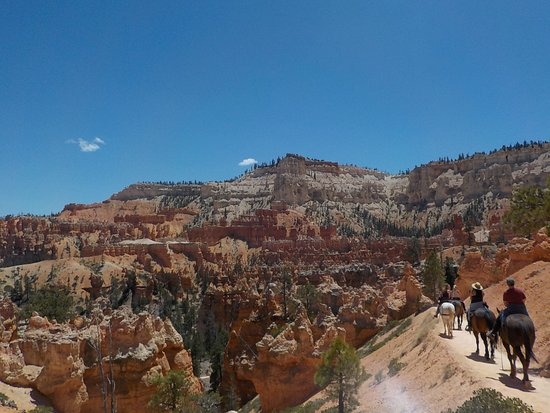 Canyon Trail Rides: So yeah....you're right on the edge of the canyon!