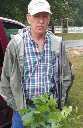 Midland Community Farmers Market : Frank Cochrane, one of our local farmers
