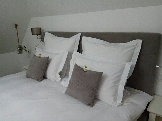 Arce Boutique Hotel Photo