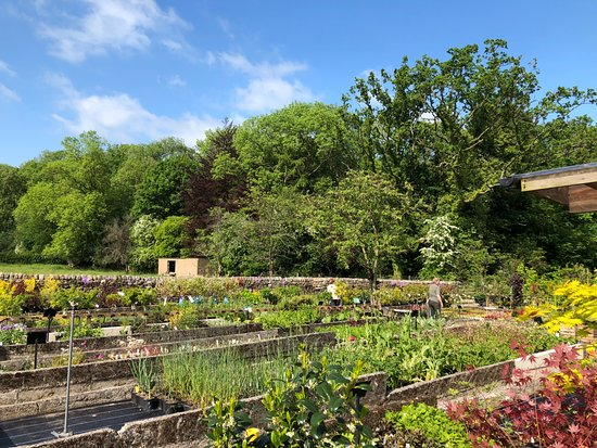 Bolton by Bowland, UK: Gardens