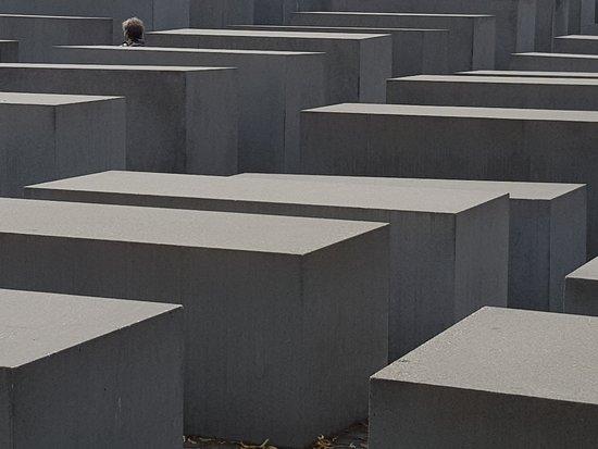 อนุสรณ์สถานฮอโลคอสต์: Detalles de las 2711 losas de hormigón