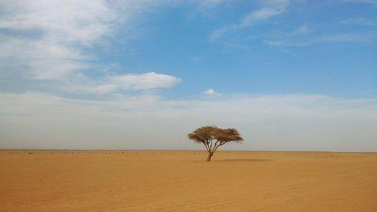 Sahara Desert Private Tour from Marrakech: serenity of the desert