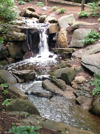 Greensboro, NC: waterfall