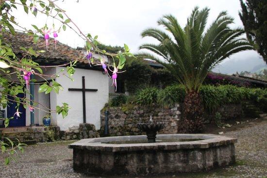 Hacienda Pinsaqui Görüntüsü