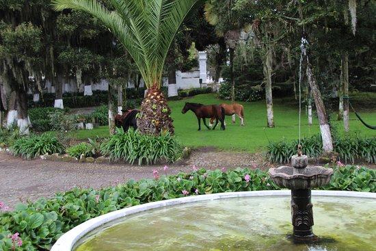 Hacienda Pinsaqui照片