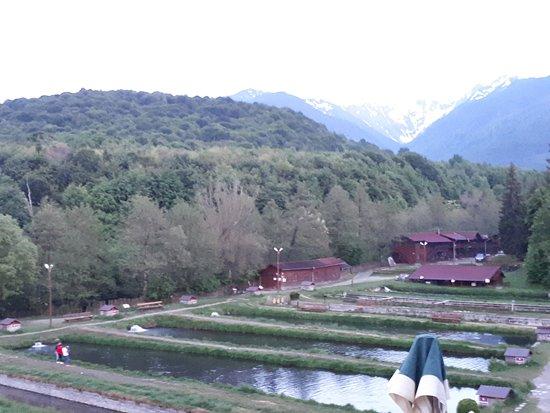 Arpasu de Sus, Romania: Trout ponds