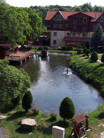 Arpasu de Sus, Romania: Suites