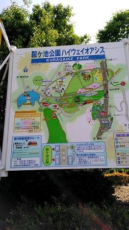 Foto de Kuragaike Park