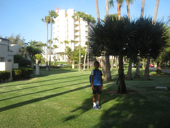 Well maintained grounds at Riu Oliva Beach resort/Annex area
