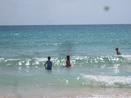 Hotel Riu Oliva Beach Resort: Beautiful beach in front of Riu Oliva Beach resort
