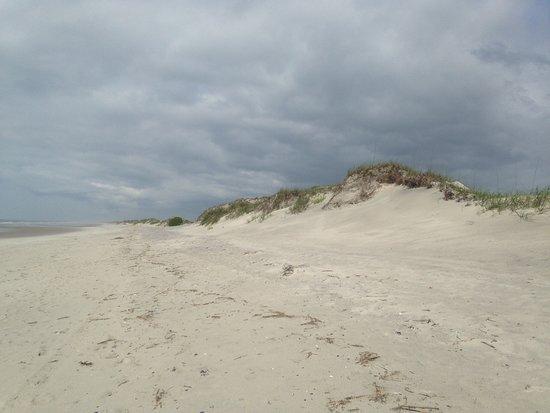 Hammocks Beach State Park: Hammock's Beach Bear Island