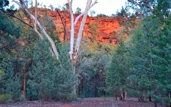 Wilpena, Australien: Fiery dawn in the campsite