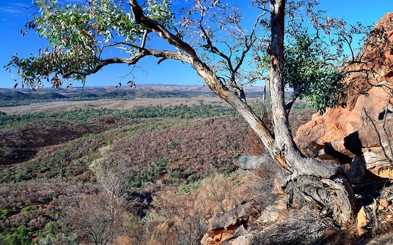 Wilpena, Australia: Looking down to the campsite from a nearby view