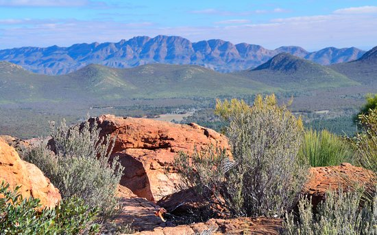 Wilpena, Australia: 10 mins walk from the campsite - sweeping views across the Pound