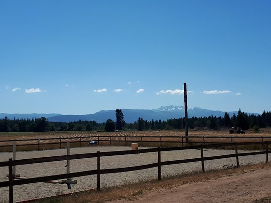 Paradise Acres Ranch: View from the 'Studio deck' at 'haying time'.