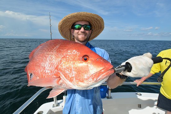 Distraction Charters: big red snapper