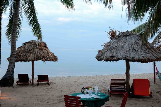 Belizean Dreams Resort: Beach view from ocean front room at Belizean Dreams Hotel