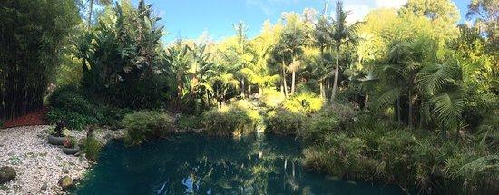 Montrose, Australien: photo7.jpg