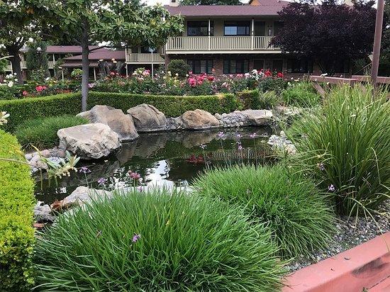 Paso Robles Inn: Ornamental Pond