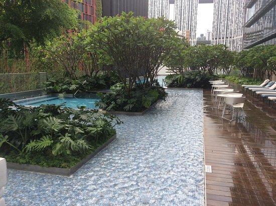 Sofitel Singapore City Centre: Pool area