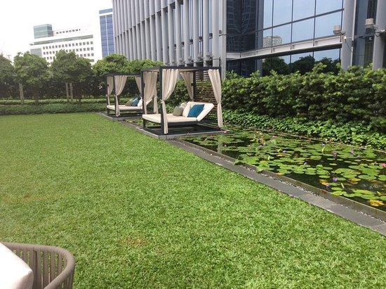 Sofitel Singapore City Centre: Peaceful garden area near pool