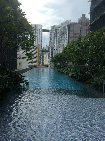 Sofitel Singapore City Centre: Main pool