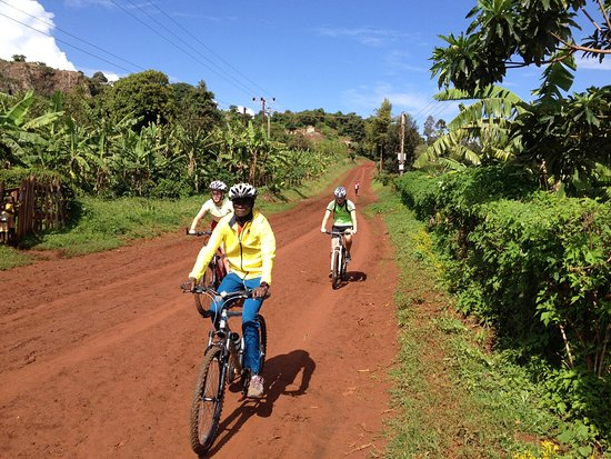 Home of Friends: We organize mountain bike tours through beautiful landscapes and local villages